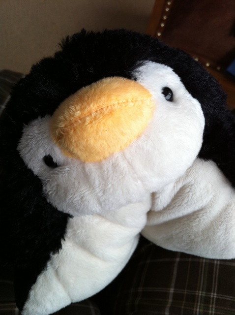 Cute Names For A Penguin Pillow Pet : Pillow Pet Pee-Wee Penguin to help @ascottfalk recover. Flickr