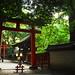 between the torii gates (Shimogamo-shrine, Kyoto)