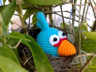 Blue Angry Bird Amigurumi Pattern : Amigurumi Blue Angry Bird iknit-fibreart.com/2011/07/17 ...