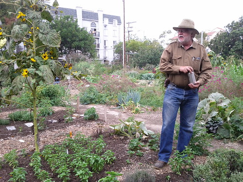 Master Gardener David King- The Learning Garden at Venice HS | by Veronica in LA