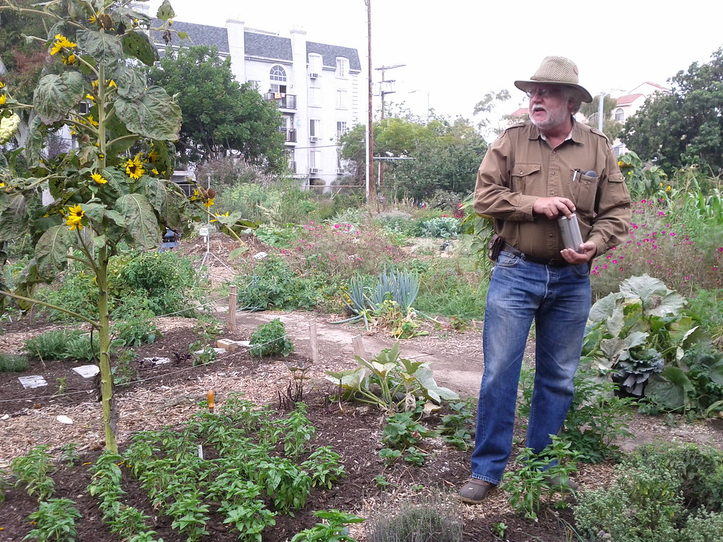 master gardener david king the learning garden at venice hs by veronica in la - The Learning Garden
