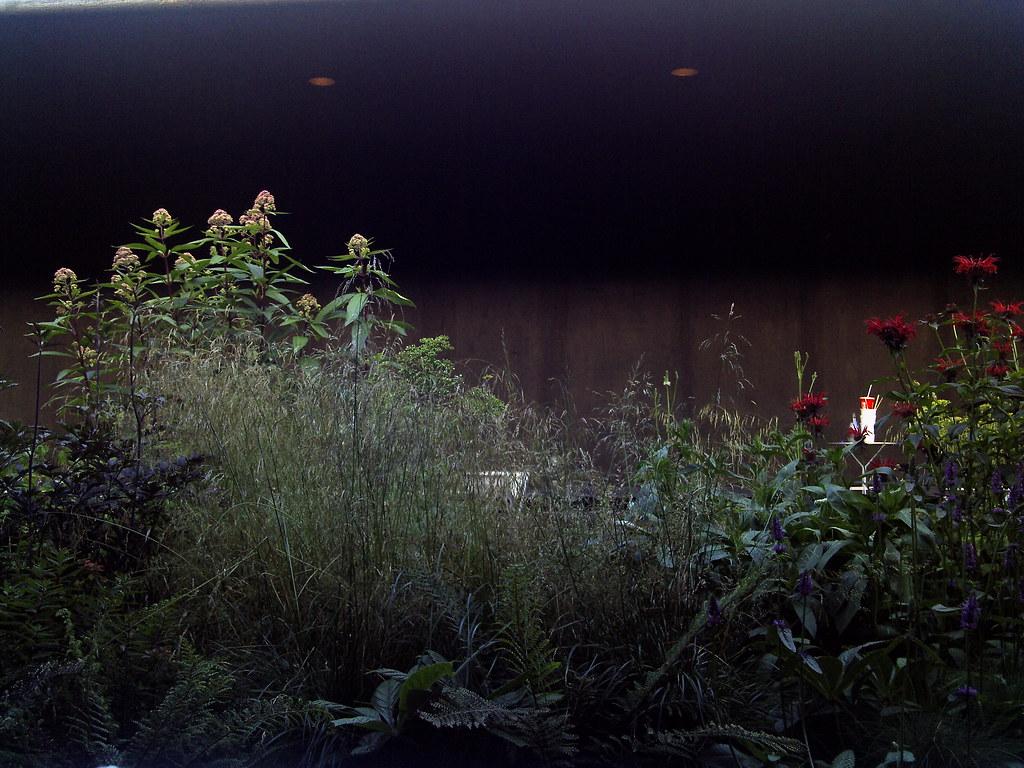 2011 serpentine gallery pavilion by peter zumthor with gar for Piet oudolf serpentine gallery