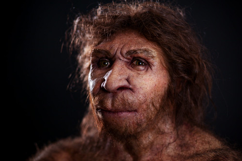 Homo Heidelbergensis  Miguelón  Museo de la Evolución Humana  Flickr