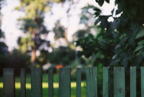 fence | by Liis Klammer