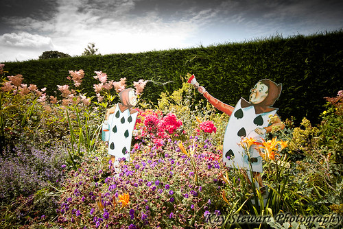 Mad Hatters Tea Party | by Kay Stewart Photography