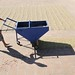 Drying coffee at Tecapa