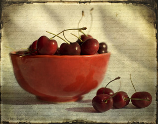 Life is a bowl of cherries | by dog ma