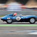 Irvine Laidlaw's Ecurie Ecosse 1955 Jaguar D Type No.132 - 2011 Silverstone Classic