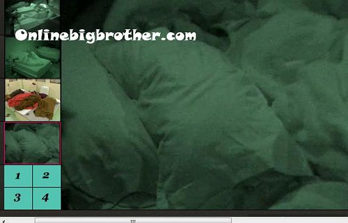 BB13-C4-8-3-2011-8_10_21.jpg | by onlinebigbrother.com