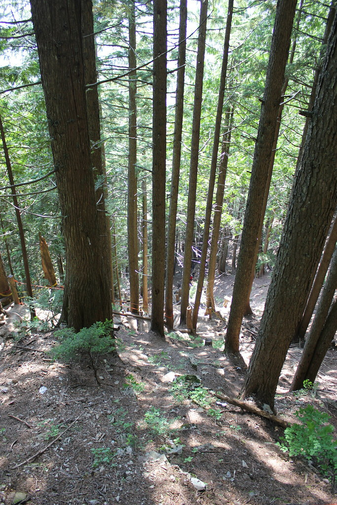 how to get to grouse grind trail