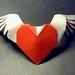 winged heart, Tuan Nguyen Tu