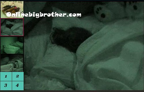 BB13-C1-8-7-2011-9_54_58.jpg | by onlinebigbrother.com