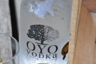 Bottle of OYO Vodka | by swampkitty