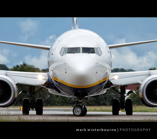EI-DYH | by Mark Winterbourne | markwinterbourne.com