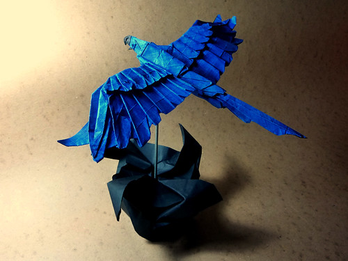 Macaw | by Hugoakitaya