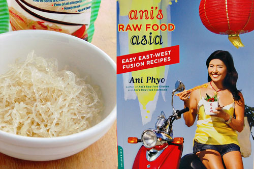 Vegetarian Pho From Ani's Raw Food Asia | by chow vegan