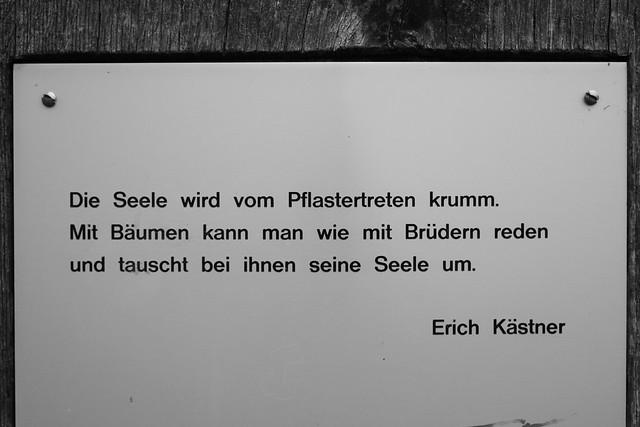 Wie Tauscht Man Schl Ef Bf Bdssel H Ef Bf Bdllen Von Mercedes C W