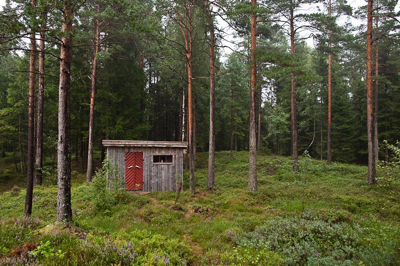 Hunting Lodge Bathroom Antler Door Handles