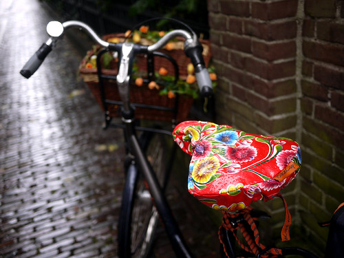 Flowery Bike Seat | by travelling two