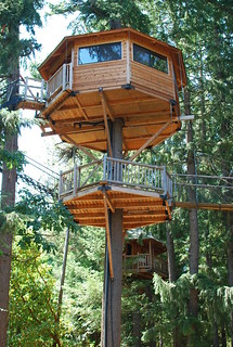some of the treehouses (like these) include modern sanitation | by nicolas.boullosa