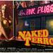 Naked Terror poster