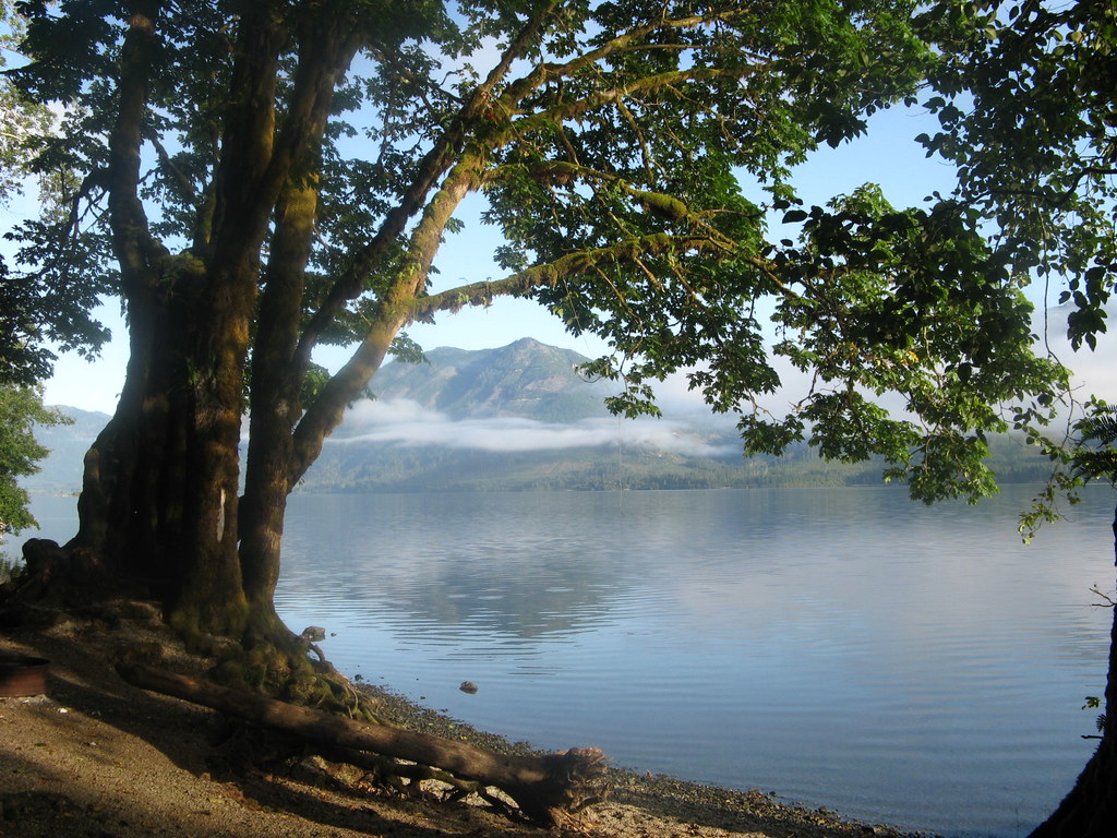 Vancouver Island Campsites: Caycuse Forestry Site