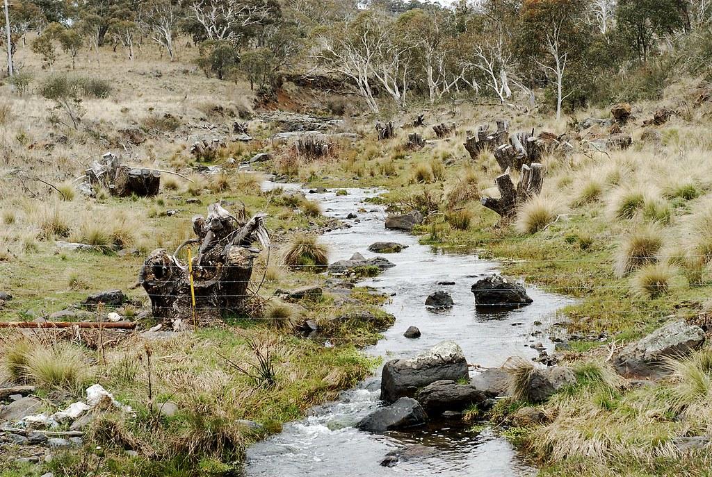 """Résultat de recherche d'images pour """"McLaughlin River"""""""