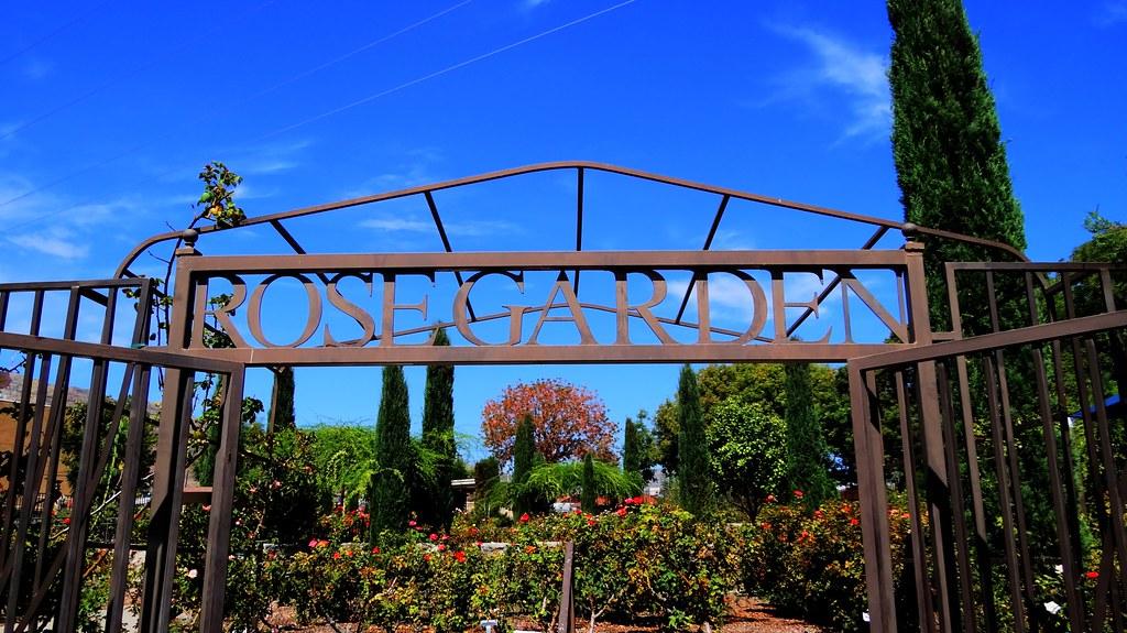el paso rose garden by slim tx - The Garden El Paso