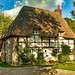 Dappled sunlight on a pretty thatched cottage at Stoke in Hampshire