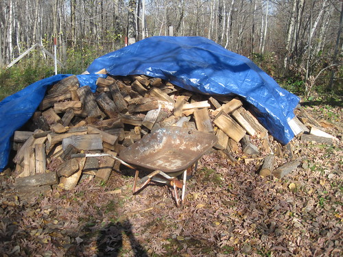 2011-10-15 First firewood stacking session 009 | by DougDroogSharp