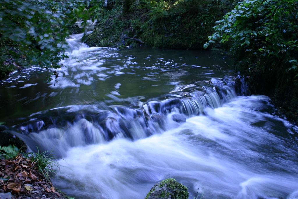 Crawfordsburn river study