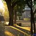 2010-10-24 17_12_15.jpg