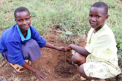 how to get to kibiki village tanzania