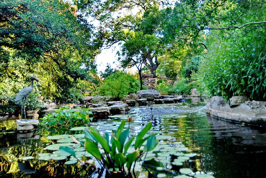 ... Zilker Botanical Gardens, Austin, Texas   By Michael Locke
