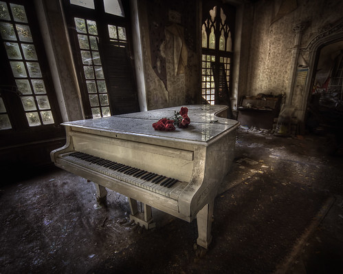 Great white :: | by andre govia.