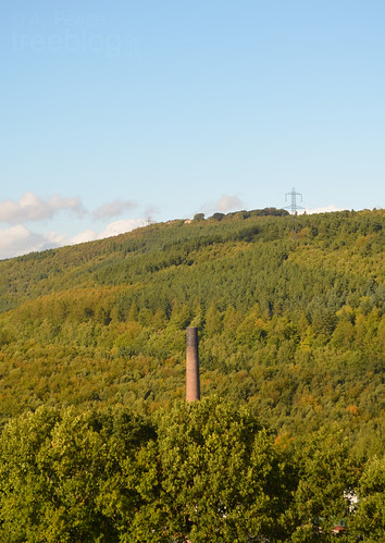 Paper mill chimney, Wharncliffe Side/Outibridge | by treeblog