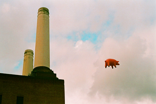 Pink Floyd Pig at BPS 2011 | by Jonathan Rhodes