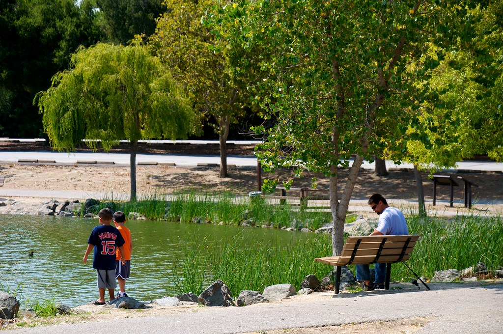 Fishing At Cottonwood Lake In Hellyer County Park