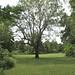 Bartram's Garden - 05