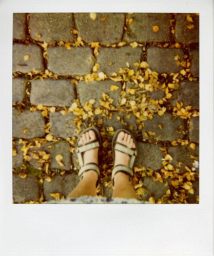Summer shoes and autumn leaves | by ronet