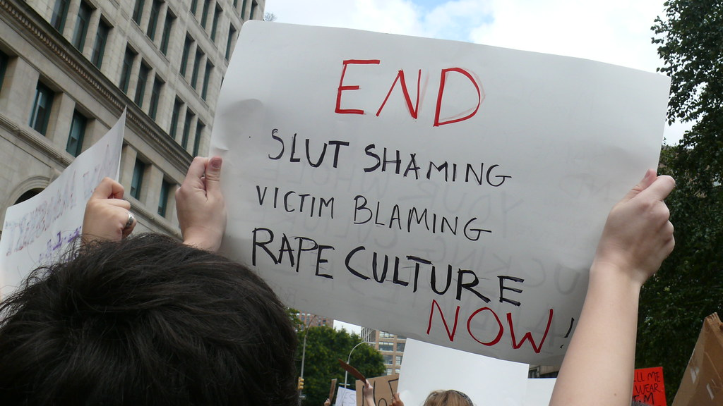 Image result for victim blaming