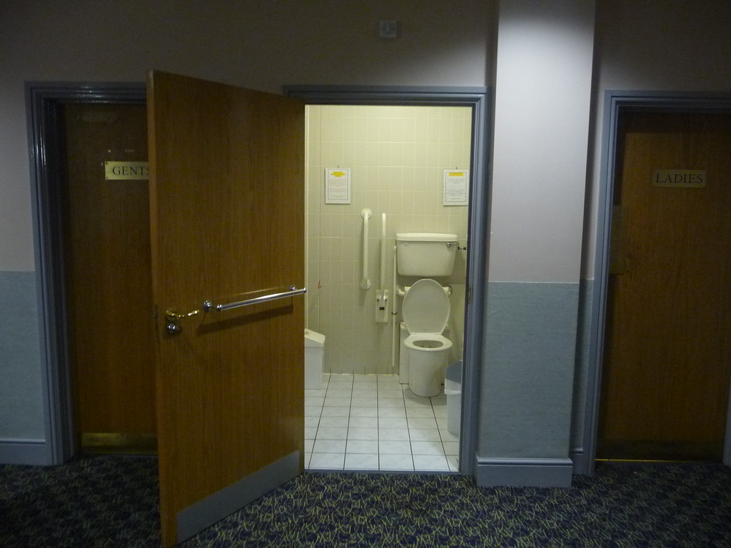 Disabled Toilet Equipment Setermscom & Disabled Doors - Sanfranciscolife