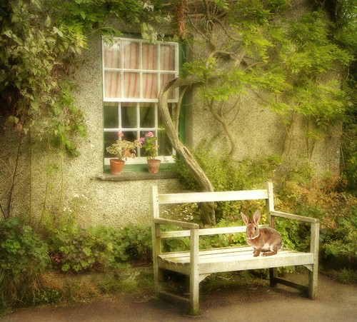 Tribute to Beatrix Potter - the Creator of Peter Rabbit | by vesna1962