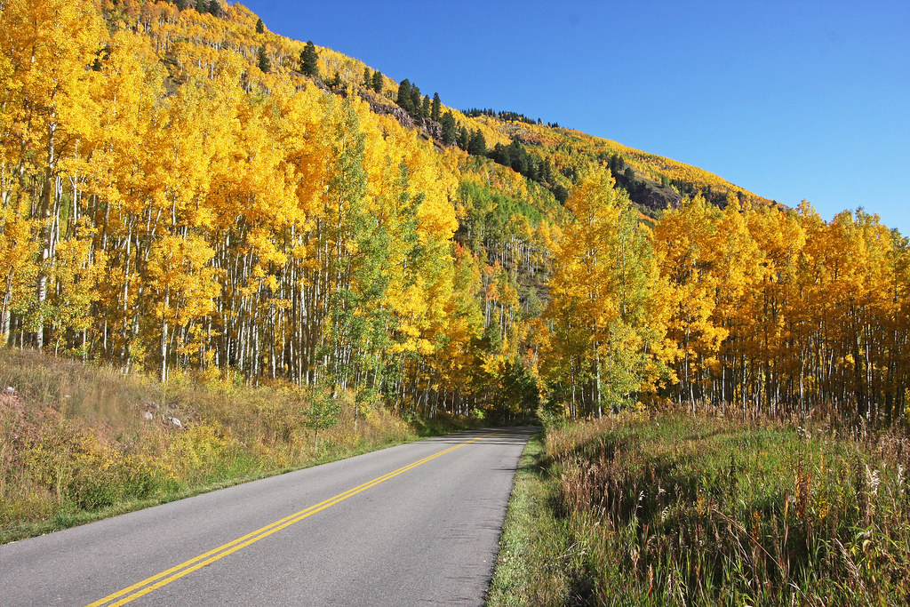 Maroon Creek Road | Fall color along Maroon Creek Road near