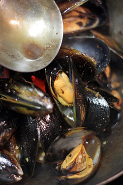 mussels in broth | by David Lebovitz