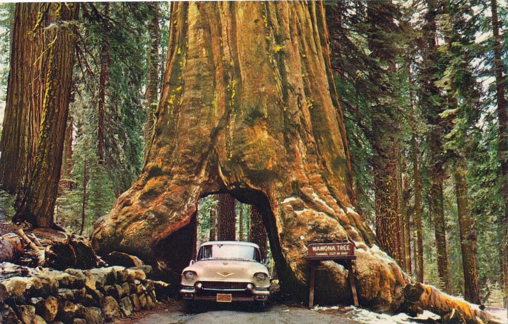 Hotels Near Redwood Valley Ca