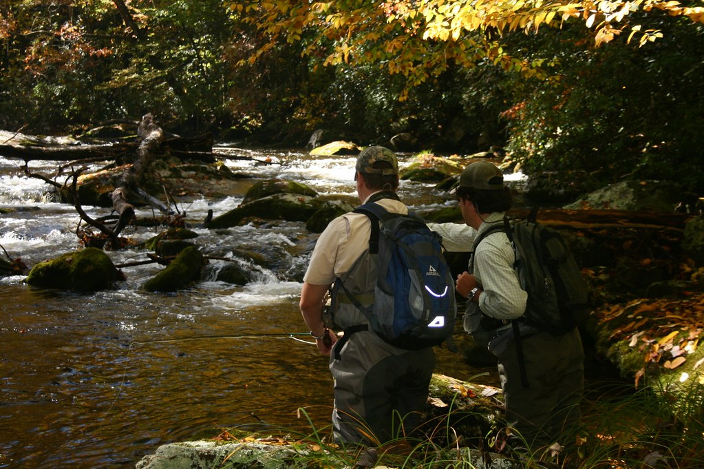 Hazel Creek Camping Trip with Fly Fishing the Smokies ...