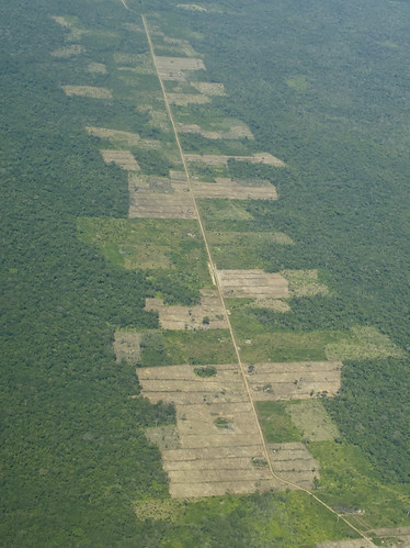 Bolivia - Roads and Deforestation - Initial Stage | by Paul B Jones