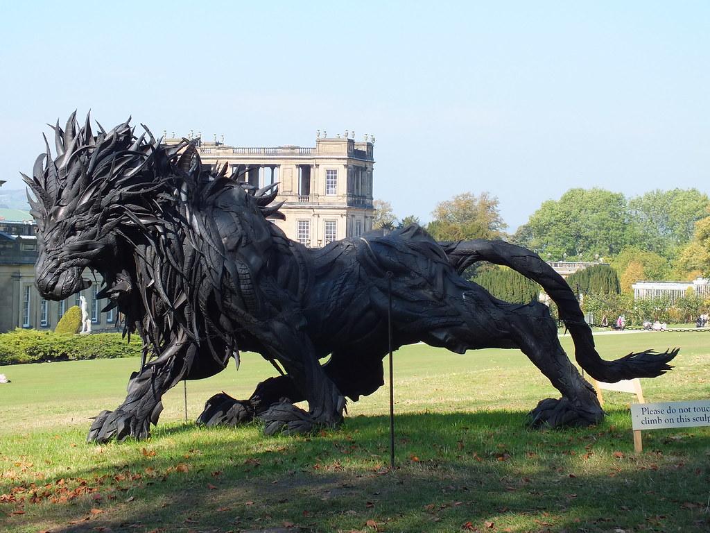 Lion 2 Ji Yong Ho Elfleda Flickr