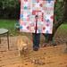 Sew Mama Sew Christmast Tree Pants Sew-along